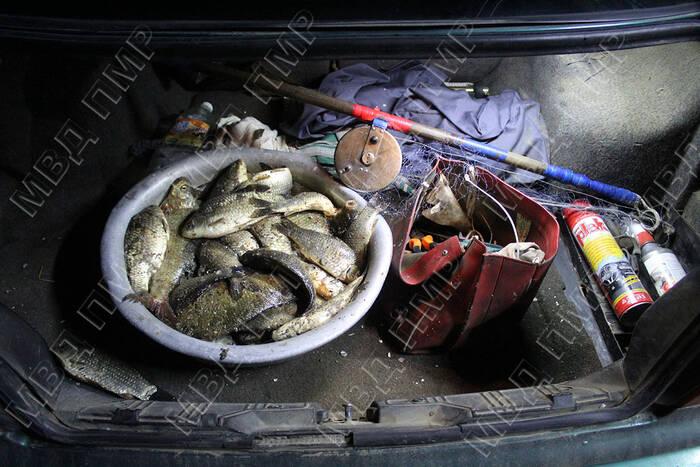 За незаконный лов рыбы задержан житель Дубоссар