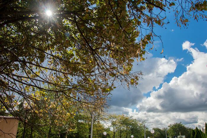 4 сентября местами ожидается кратковременный дождь