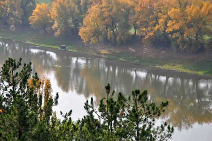 9 ноября днём до +12°С, без осадков