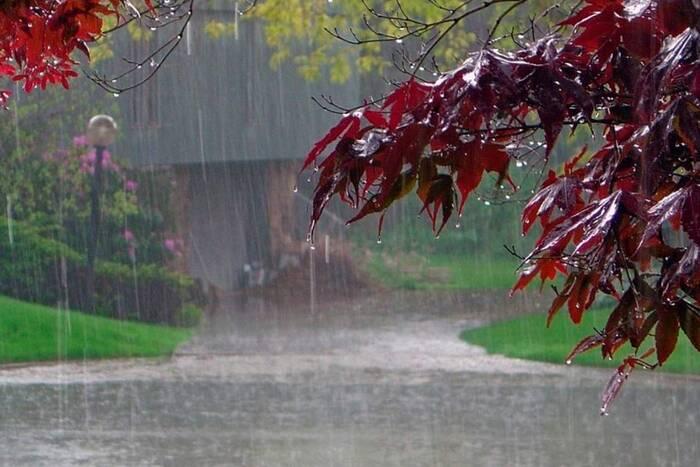 Дождливая погода в республике сохранится
