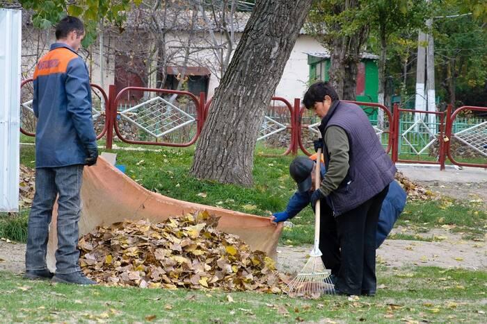 Экологи напомнили о штрафах за сжигание опавшей листвы