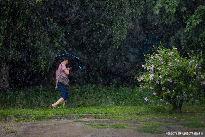 Гидрометцентр прогнозирует дождь с грозой на среду