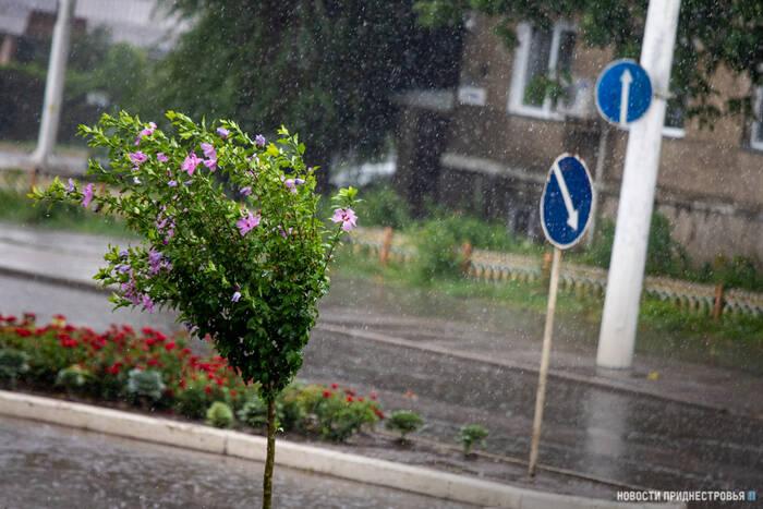 Гидрометцентр прогнозирует на 29 августа местами дожди