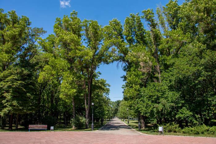 Комиссия конкурса «Самый зелёный и чистый город, посёлок, село» с 20 июля начнёт оценку населённыхпунктов
