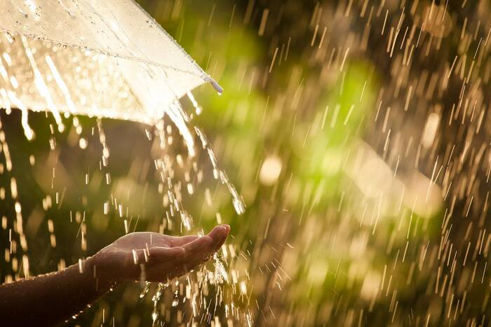 Метеорологи прогнозируют на ближайшие дни дожди с грозами