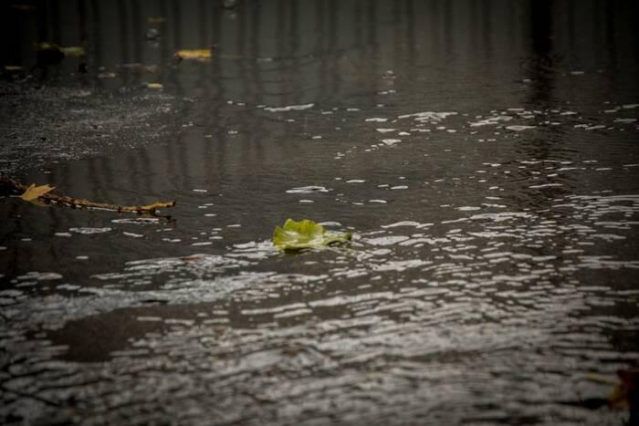 На ближайшие дни синоптики прогнозируют слабый дождь