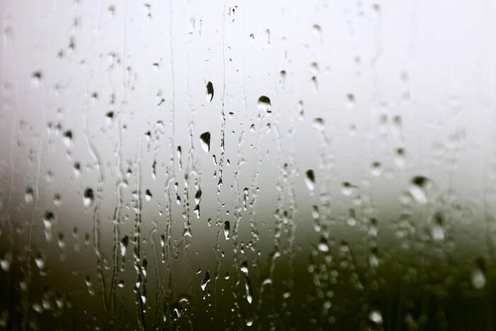 На вечер пятницы метеорологи прогнозируют дожди
