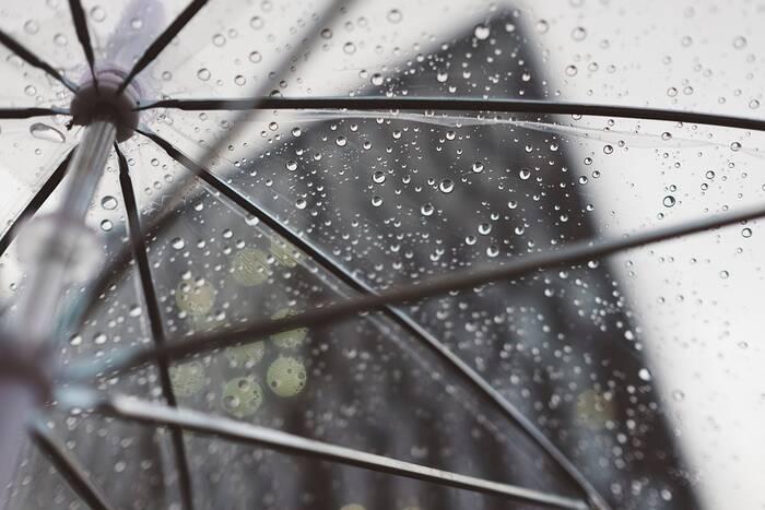 Пасмурную и дождливую погоду синоптики прогнозируют на 8 января