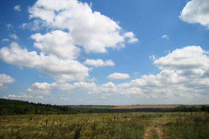 Прогноз погоды на 14 сентября: +30°С, без осадков