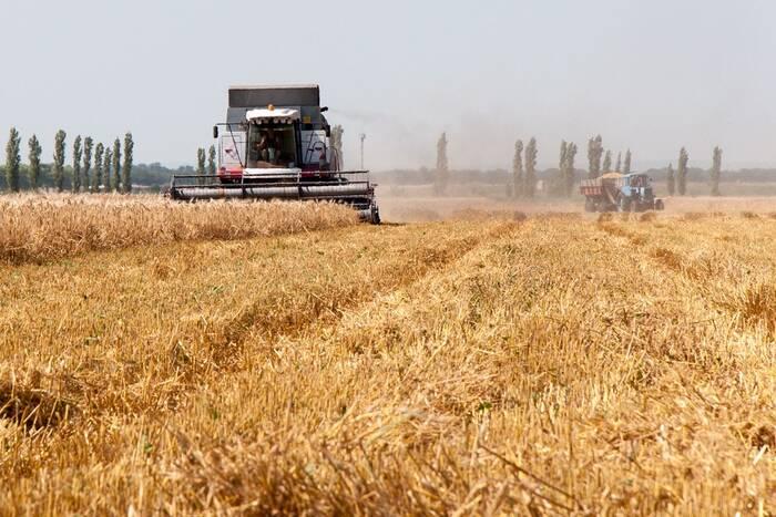 Работники отраслей сельского хозяйства отмечают профессиональный праздник