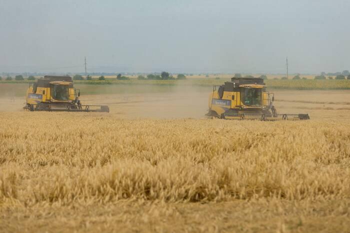 Реестр аграриев - получателей гуманитарной помощи РФ составят в ближайшее время