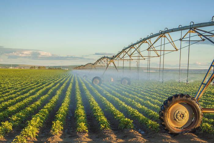 В  этом году в Дубоссарском районе площадь орошаемых земель увеличилась в 2,5 раза