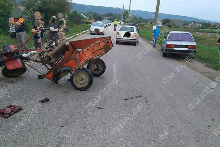 В Каменском районе столкнулись мотоблок и иномарка