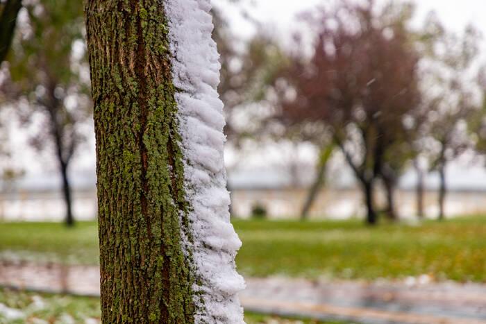 В начале рабочей недели по югу Приднестровья пройдет снег