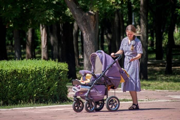 В Верховном Совете рассказали о мерах господдержки приднестровских семей